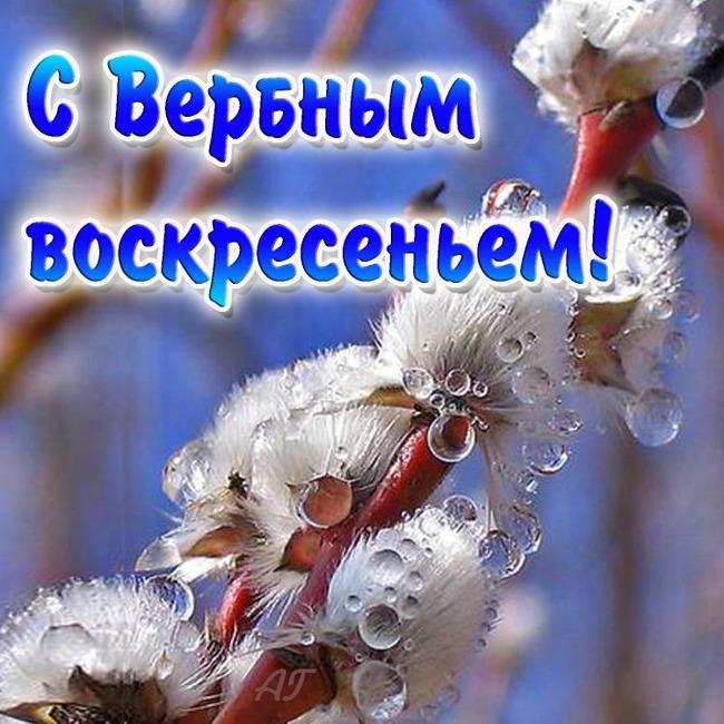http://karakulcy.narod.ru/_nw/0/85536091.jpg